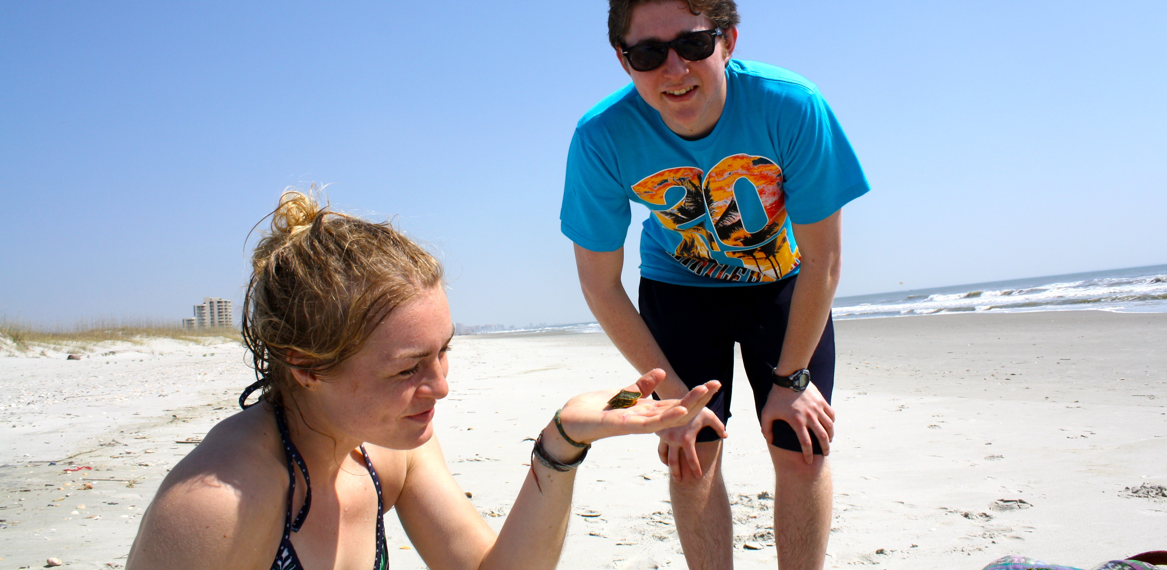 Emma and Mike find a baby turtle on the beach!